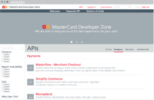 Mastercard Developers Wireframe 1